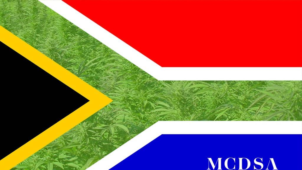 Current Cannabis Laws in South Africa
